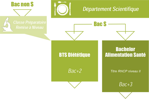 formations scientifiques